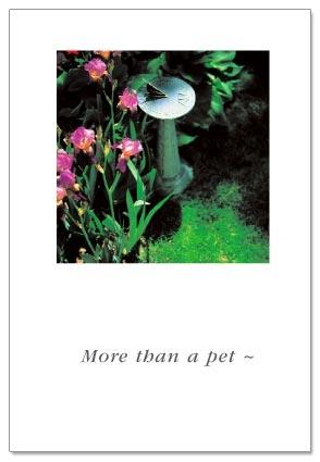 Sundial Pet
