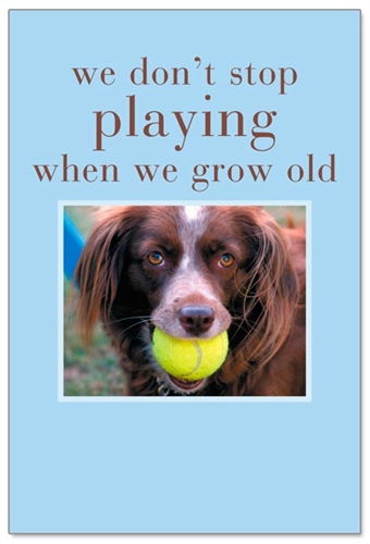 Dog with tennis ball cardthartic dog with tennis ball m4hsunfo