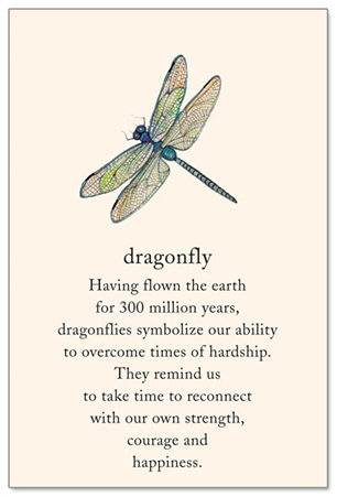 dragonfly cardthartic
