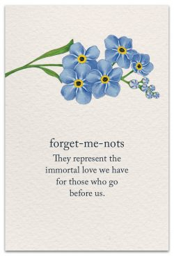 forget-me-nots condolence card front