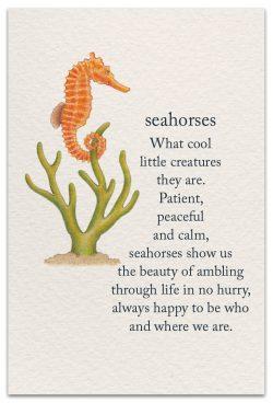 seahorses birthday card front