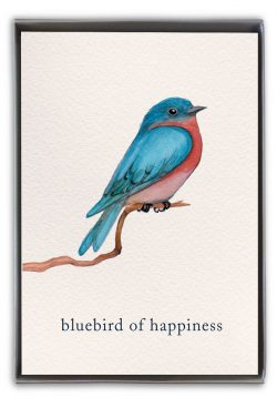 bluebird of happiness boxed notes