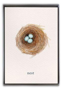 nest boxed notes