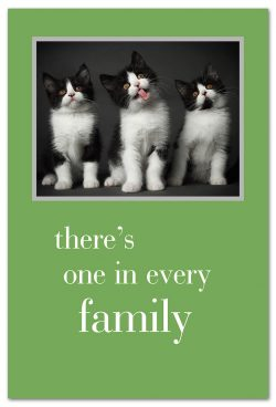 one in every family birthday card front