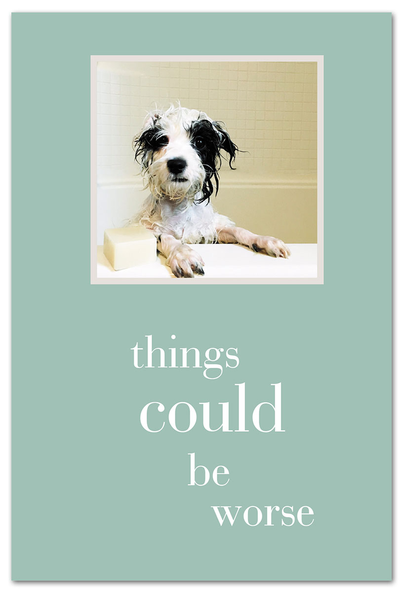 pup in tub feel better card