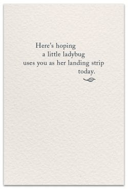 Ladybug Friendship Card Inside Message