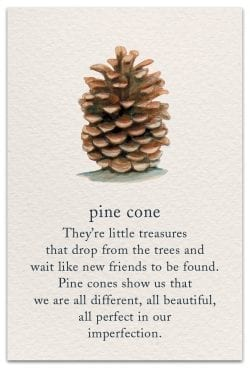 Pine cones birthday Card Front