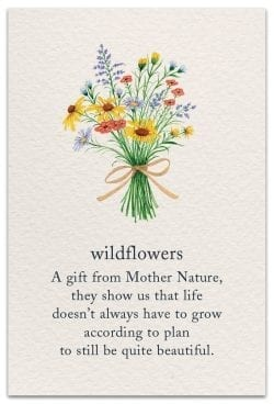Wildflowers Birthday Card front
