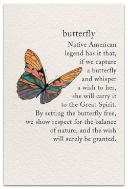 Butterfly Birthday Card Front