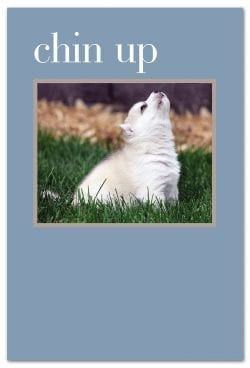 chin up husky support encouragement card inside message