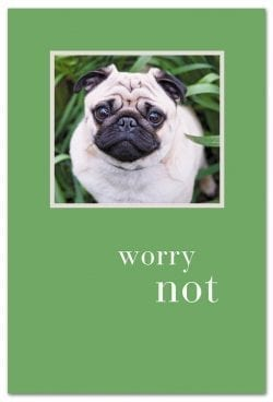 Worry Not support encouragement card front