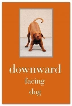 Downward Facing Dog birthday card front