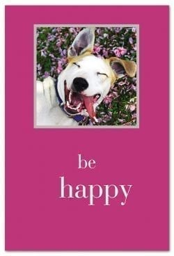 Be happy dog birthday card front