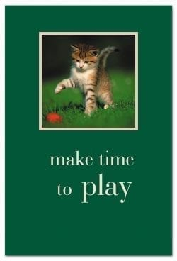 kitten playing with red ball birthday card front