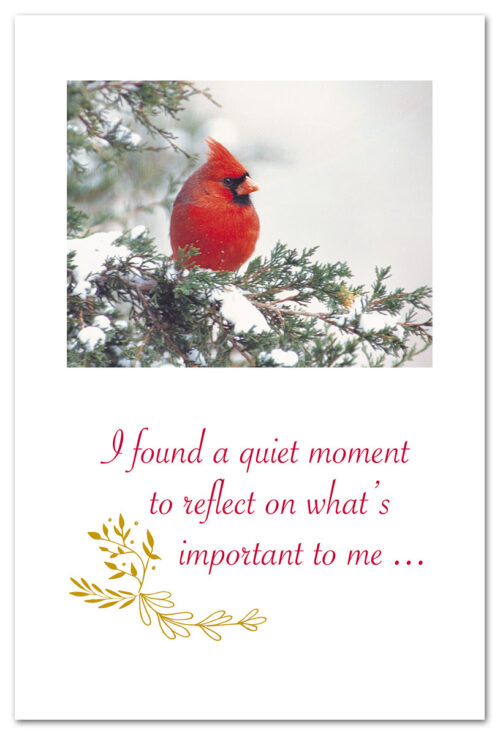 Winter Cardinal | Christmas Card | Cardthartic .com